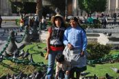 Pigeon pose, Arequipa, Peru