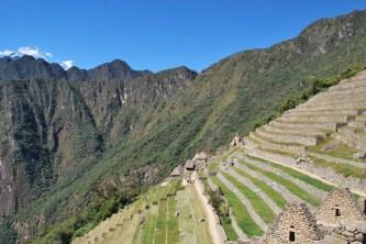 Terracing, Machu Picchu, Peru