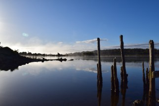 Early morning on the river at Chepu, Chiloé