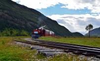'Fin del Mundo' train