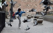 A little boy takes on the pigeons with gusto, Cordoba.