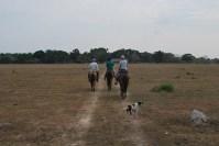 Cowboy days n Los Llanos, Colombia.