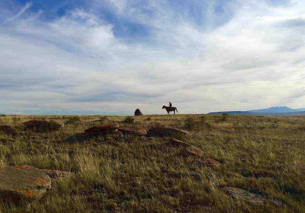 Protecting the land: <em>Rancher, Farmer, Fisherman</em> and <em>RISE</em>