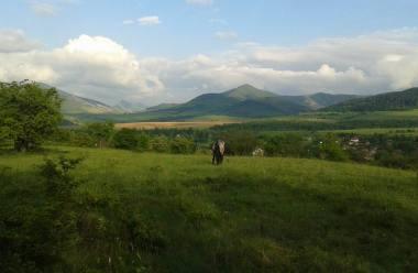 Земеделските инвестиции от Видин