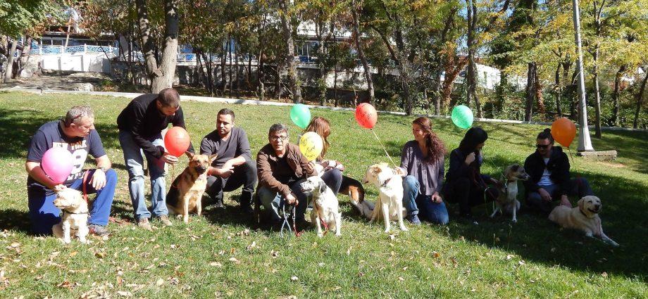 Sevgili köpeğim blogunda yazarız. İlkokul kitaplarındaki tanımlara tam uymasa da biz bir nevi çekirdek aileyiz.http://sevgilikopegim.com/2014/10/05/bizim-aile-uyeleri/