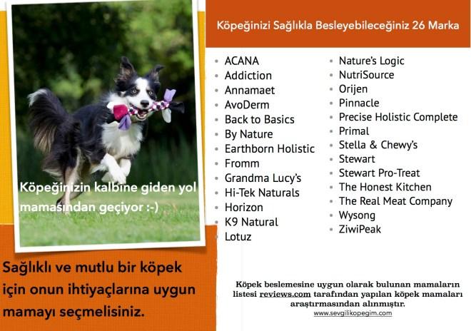 Köpek Mamalarının Ardındaki KorkutucuGerçek! http://sevgilikopegim.com/2015/06/21/kopek-mamalarinin-ardindaki-korkutucu-gercek/