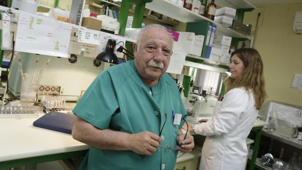 Félix López Elorza, presidente de la Asociación Andaluza para el Estudio de Intolerancias Alimentarias