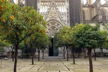 SevillaPatioNaranjos