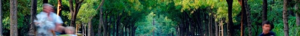 sevilla-parque-de-maria-luisa