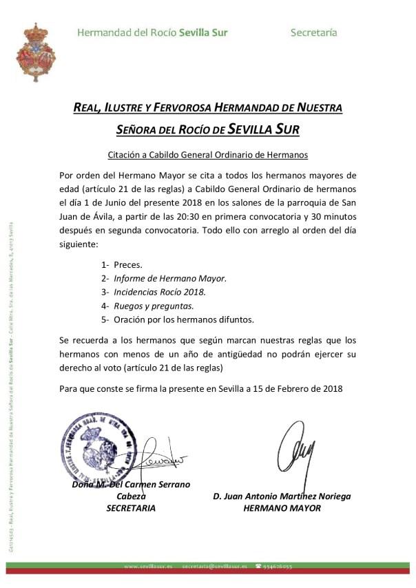 cabildo incidencias rocio 2018 sevilla sur