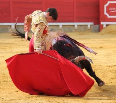 Garrido_CorteganaAP1