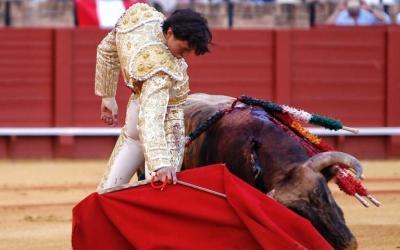 Corrida de toros – Antonio Ferrera, El Juli y Roca Rey