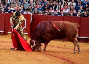 Sevilla 15-04-16 conchitina fotografía TOROS. FERIA DE ABRIL. 2º TORO DE MORANTE