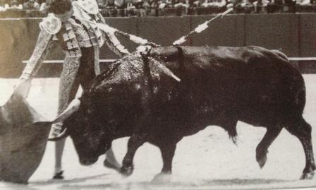Ponce1993
