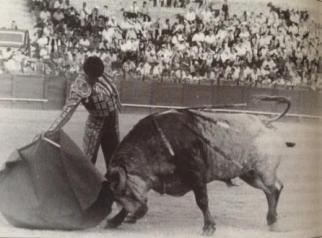 Punta1993