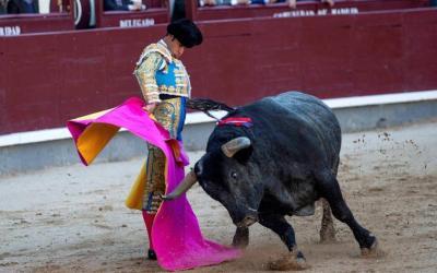 Madrid: 29ª de San Isidro – Carasucia, un motor de alta gama