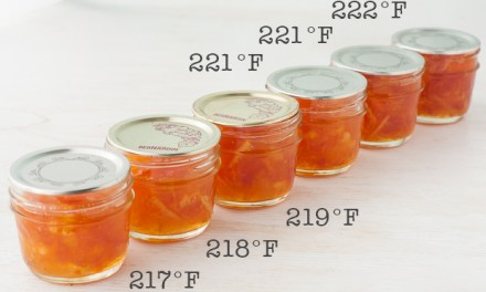 MAKING MARMALADE: COOKING TEMPERATURES & THE JAM SETTING POINT