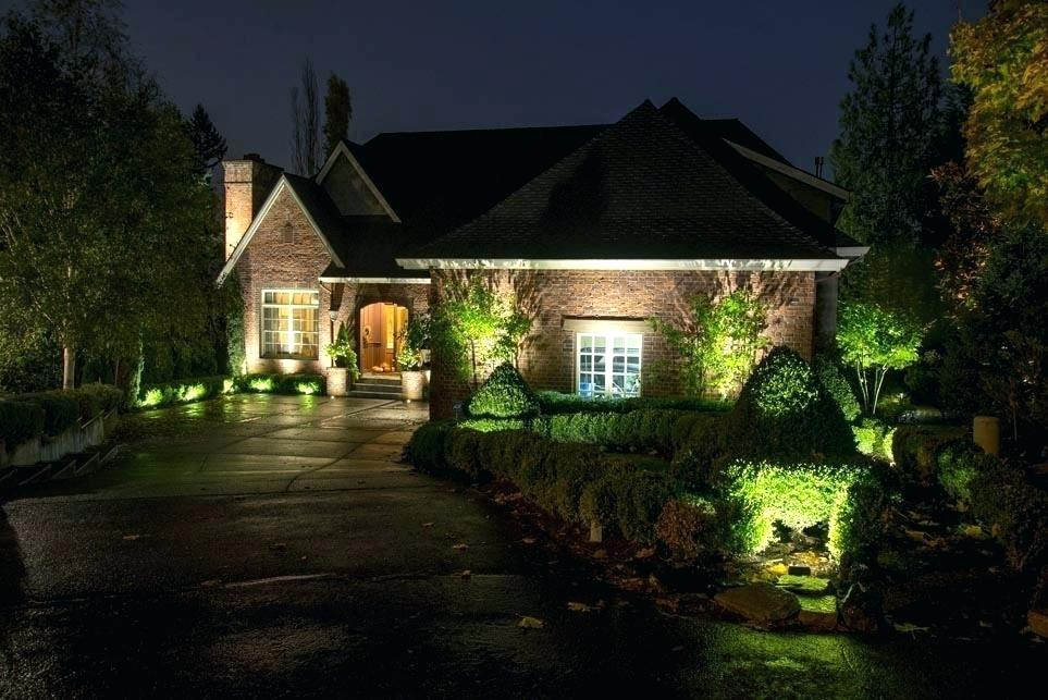 led and energy saving light bulbs