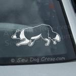 Border Collie Herding Car Window Stickers