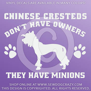 Funny Chinese Crested Hairless Stickers