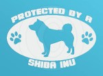 Protected by a Shiba Inu Decal