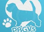 I Love PBGVs Decal