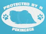 Protected by a Pekingese Decal