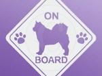 Alaskan Malamute on Board Stickers