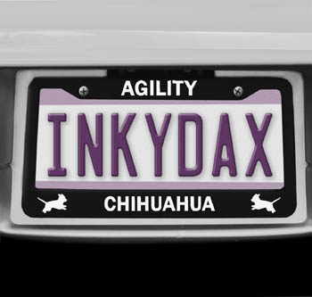 Chihuahua Agility License Plate Frame
