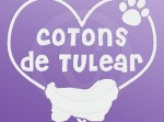 I Love Cotons de Tulear Stickers