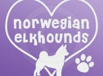 I Love Norwegian Elkhounds Stickers