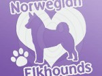 I Love Norwegian Elkhounds Decal