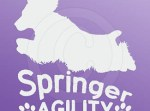 Springer Spaniel Agility Decals