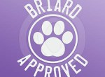 Cool Briard Decal