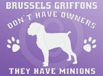 Funny Brussels Griffon Decal