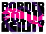 Border Collie Agility Shirts