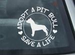 Adopt a Pit Bull Sticker