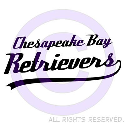 Chesapeake Bay Retriever Shirts