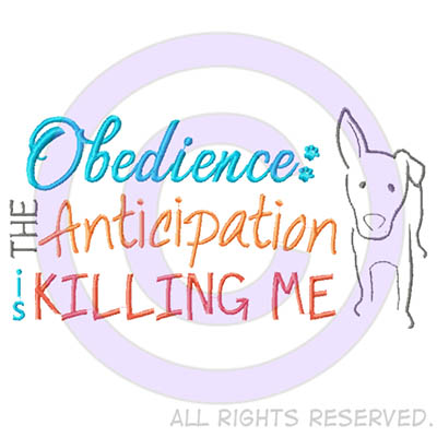 Obedience Anticipation Embroidered Sweatshirt