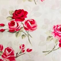 18 red roses on white