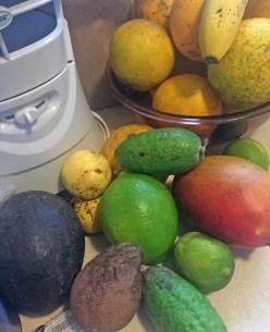 hhw-fruit