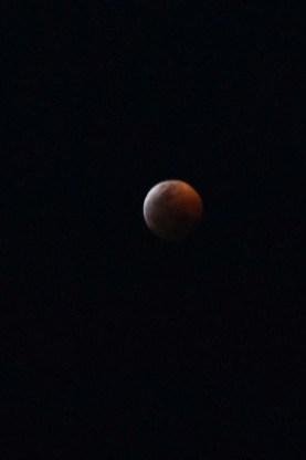 Blood Moon by LJ Christensen cr
