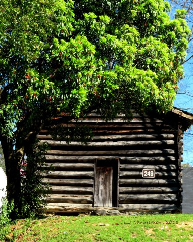 little-log-cabin-with-big-tree8x10-s-by-LJ-Christensen