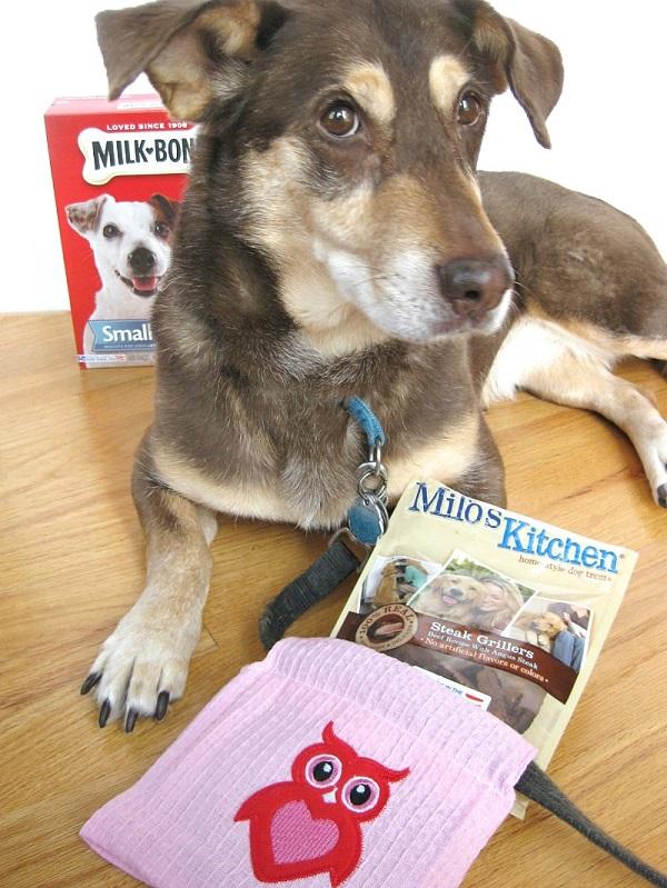 Tutorial: Dog treat gift bag and poop bag holder