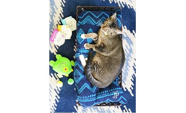 Tutorial: Fleece cat bed in a basket