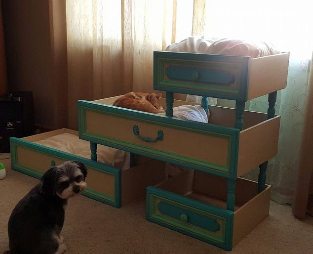 you-won-t-believe-what-my-customer-did-with-old-drawers-diy-pets-pets-animals