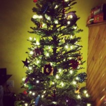 Tree is up
