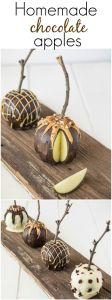 Chocolate Coated Apples, Thanksgiving around the web