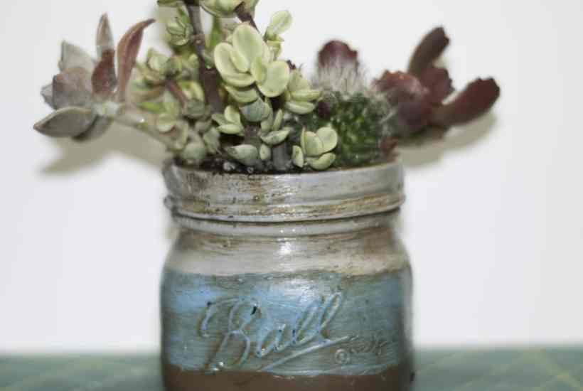 Plant mason jar succulents