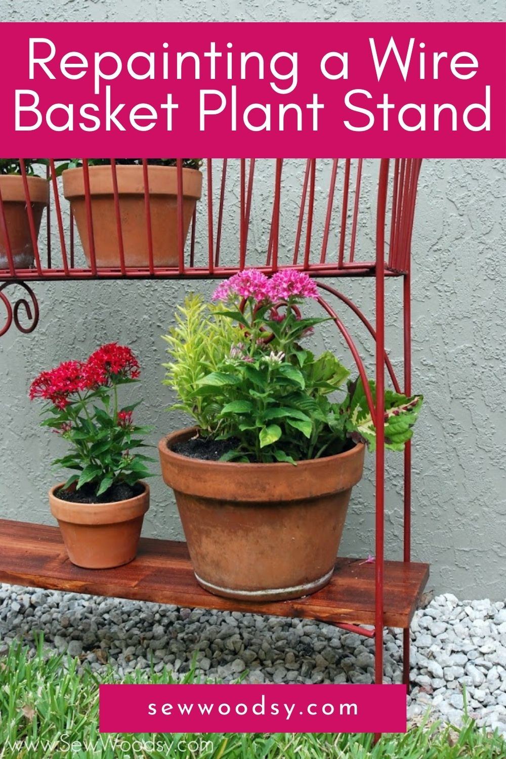 Close up of a red wire basket with a wood bottom shelf with plants on it and text on image for Pitnerest.